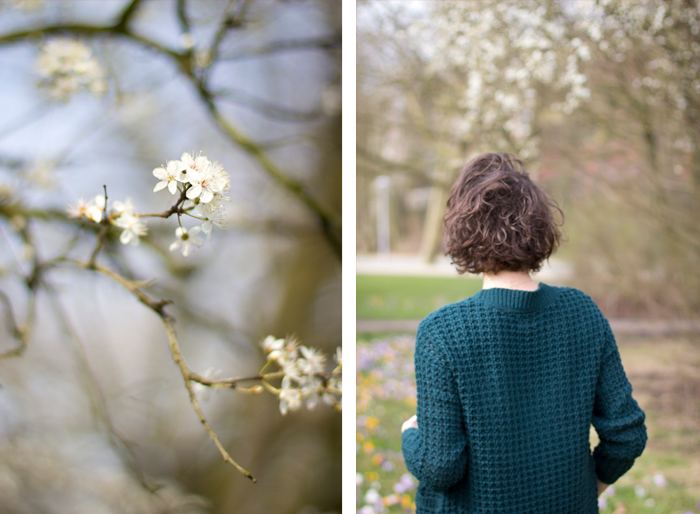 Blossom-portret-in-park