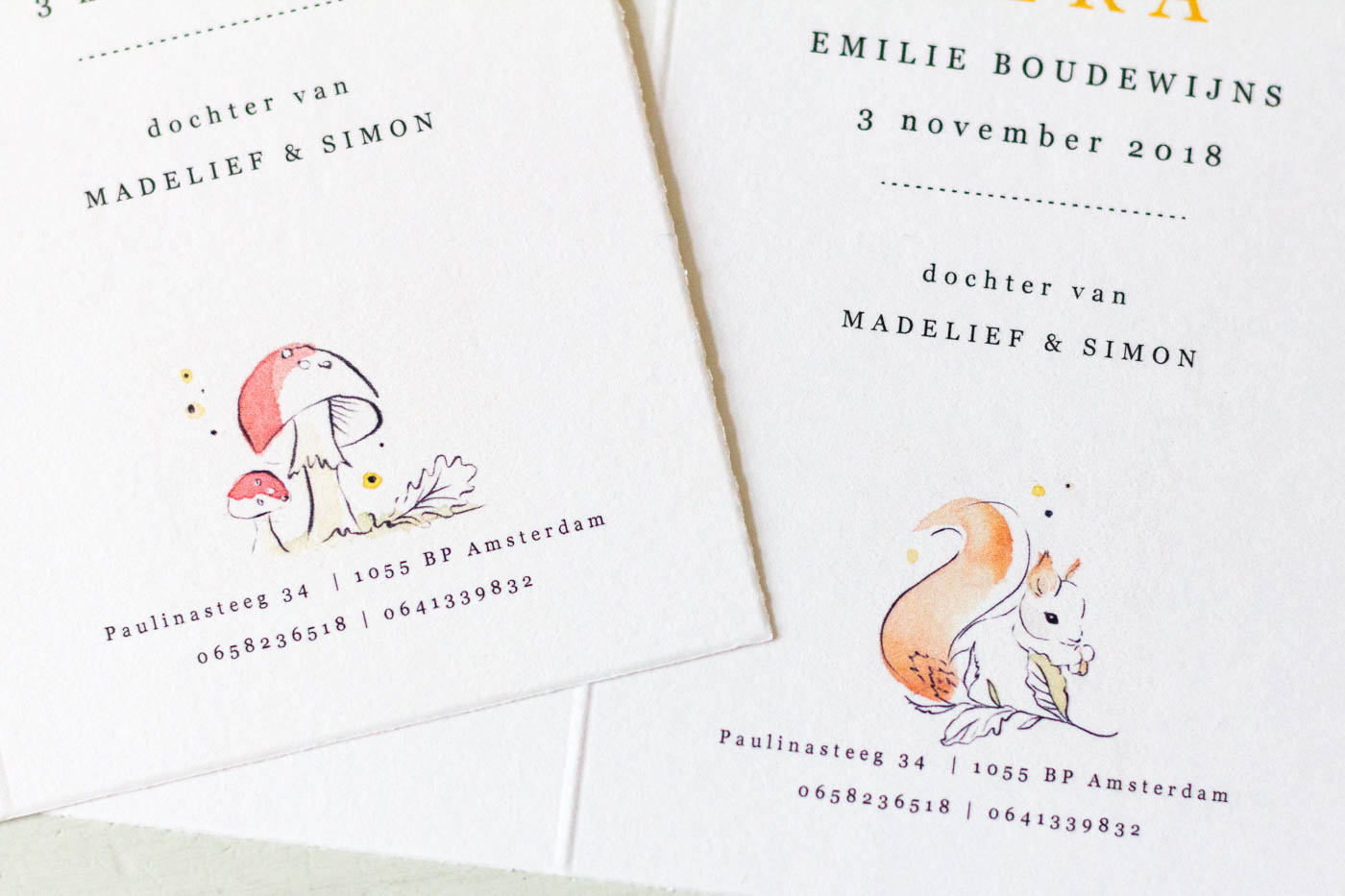 Birth announcement squirrel mushroom