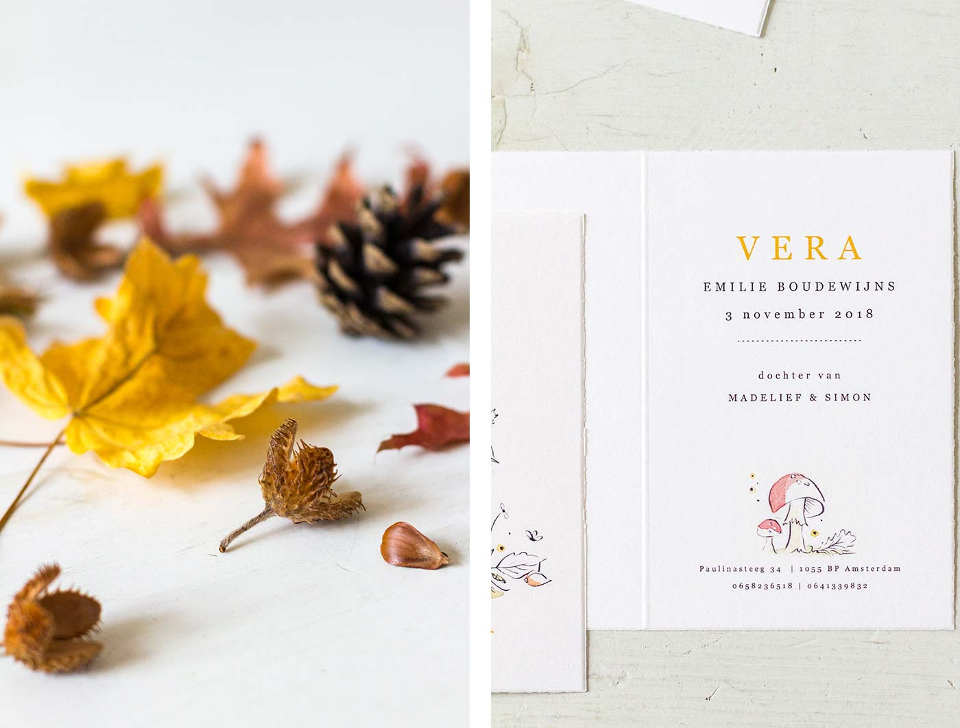 Birth announcement seasons fall nature