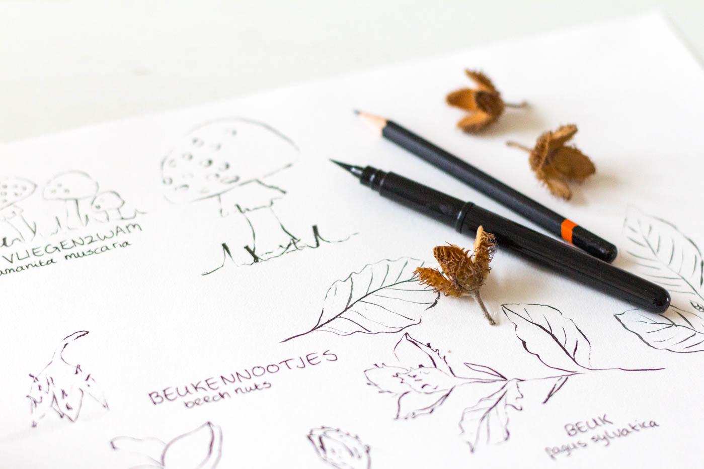 Herfst geboortekaartje schetsen beukennootjes